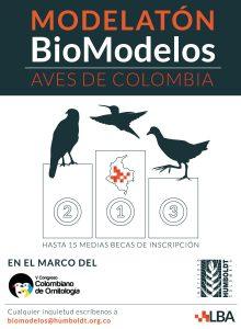 Imagen biomodelos