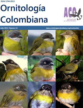 portada-revista-OC13