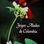 Joyas-aladas-de-colombia
