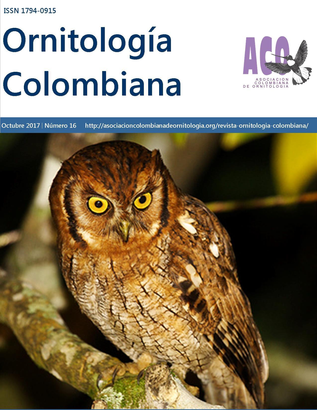 portada-revista-OC16