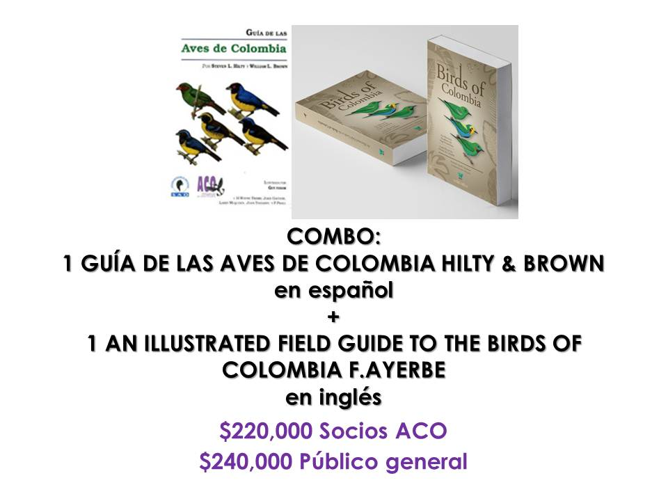 Combo guías: Hilty & Brown + Field guide to the birds of Colombia